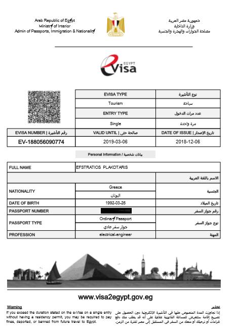 e- visa example form