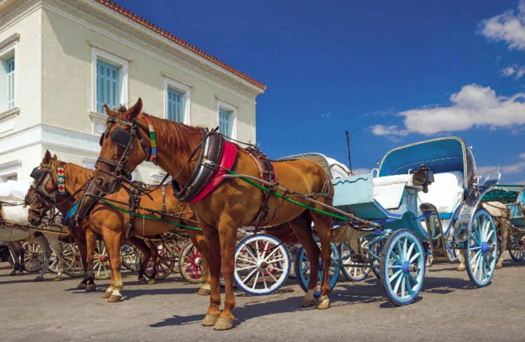 horse riding in spetses