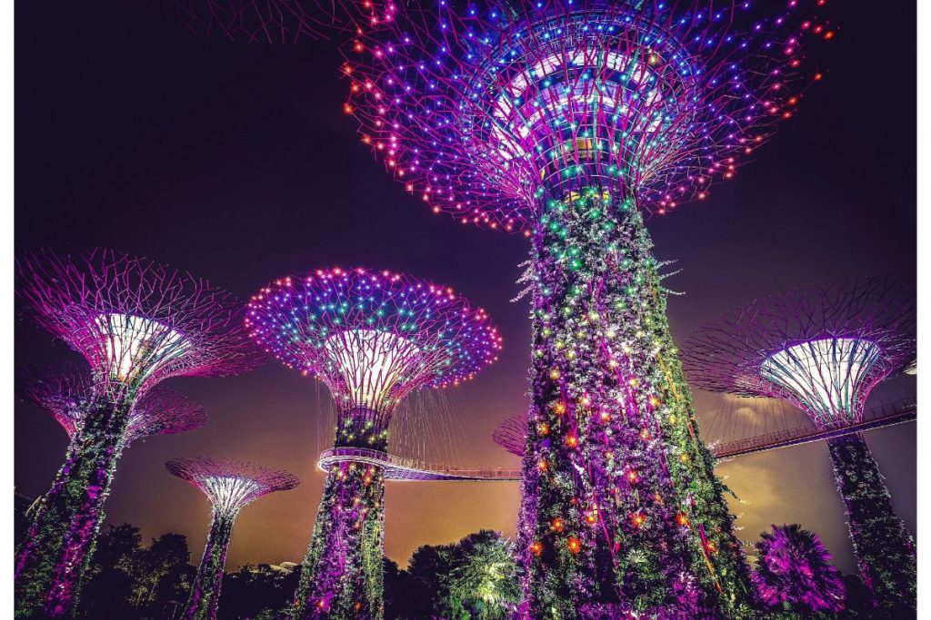 The famous gardens by the bay with famous light shows every night.
