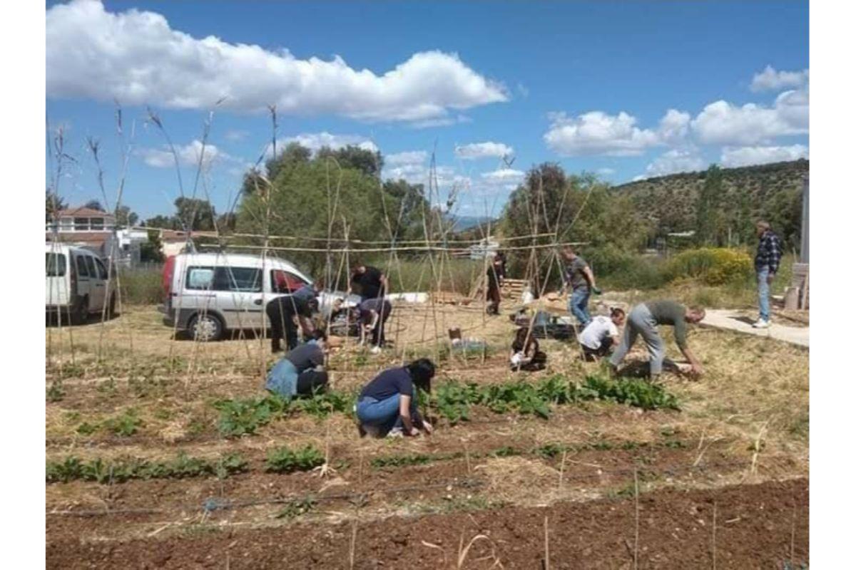 κοινωνικός λαχανόκηπος- φύτευση σπόρων