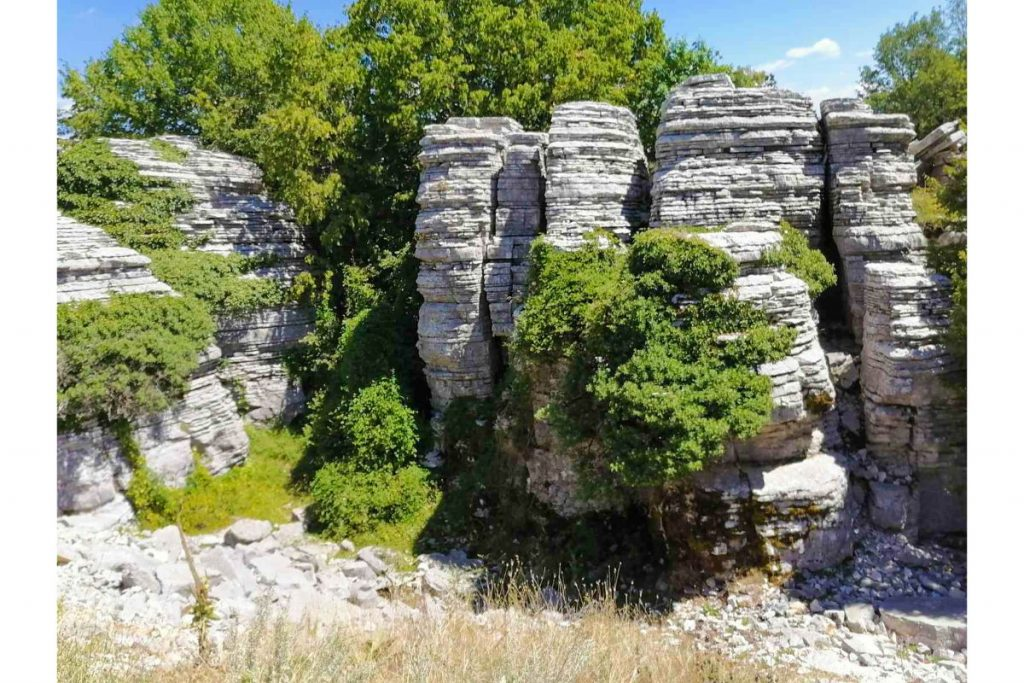 Το πέτρινο δάσος στην περιοχή του Ζαγορίου.