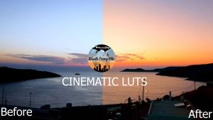 before and after cinematic luts
